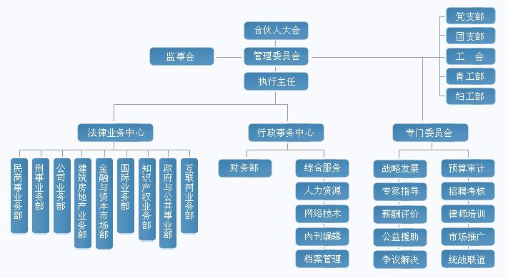 组织结构图 走进海普睿诚